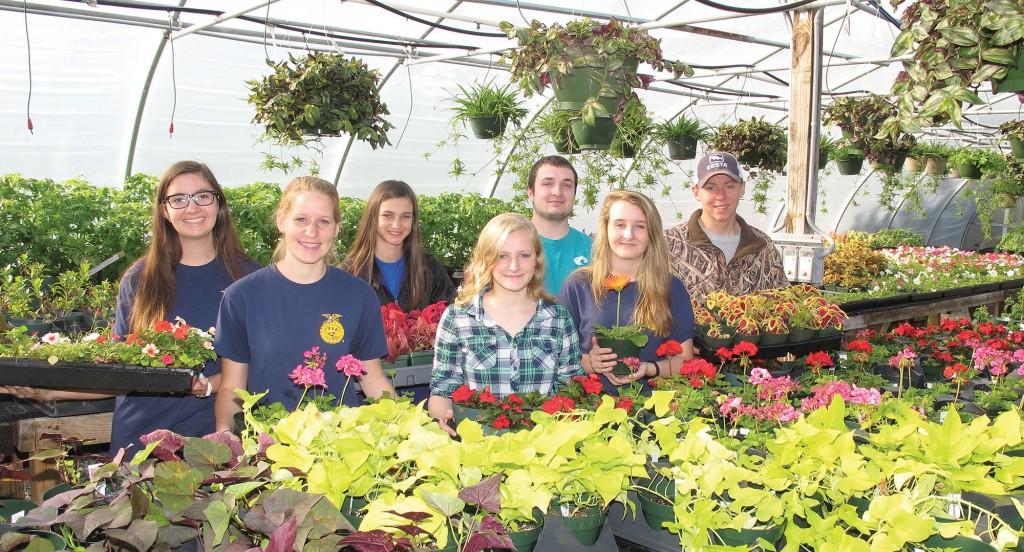 BHS Plant Sale copy