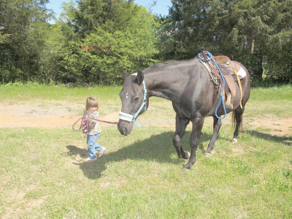 little girl leading horse copy