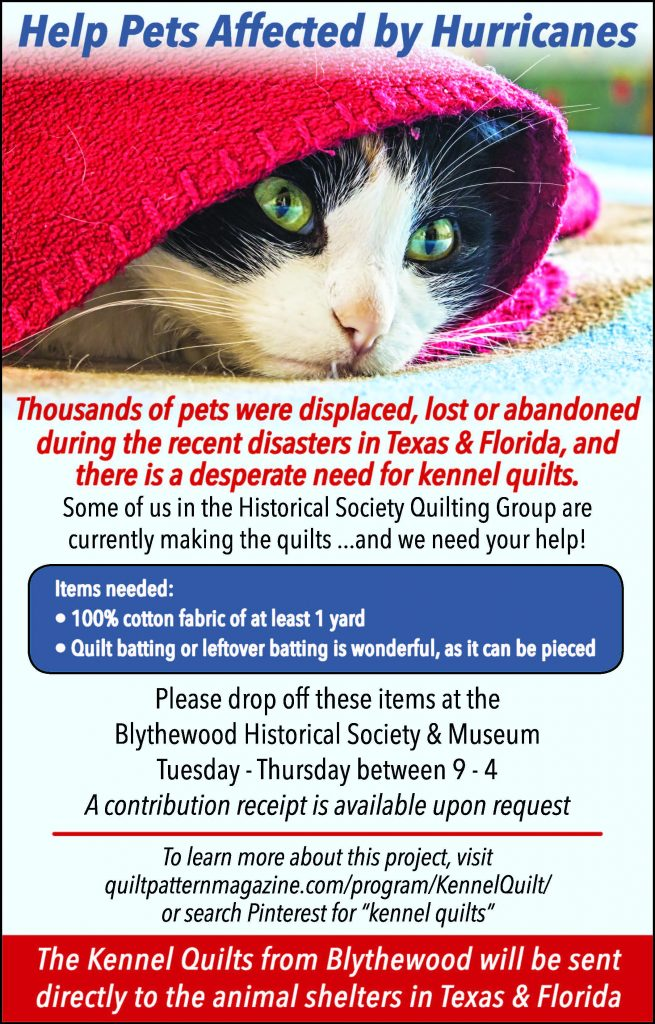 Help Pets Affected by Hurricanes | The Independent Voice of