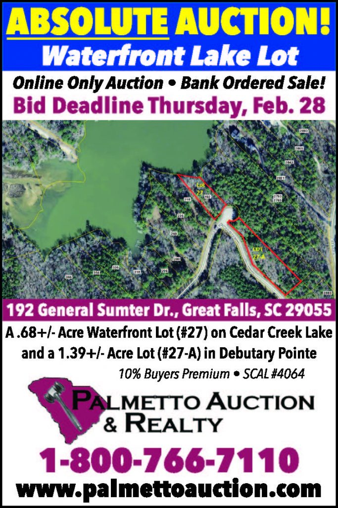 Auction: Waterfront Lake Lot | The Independent Voice of